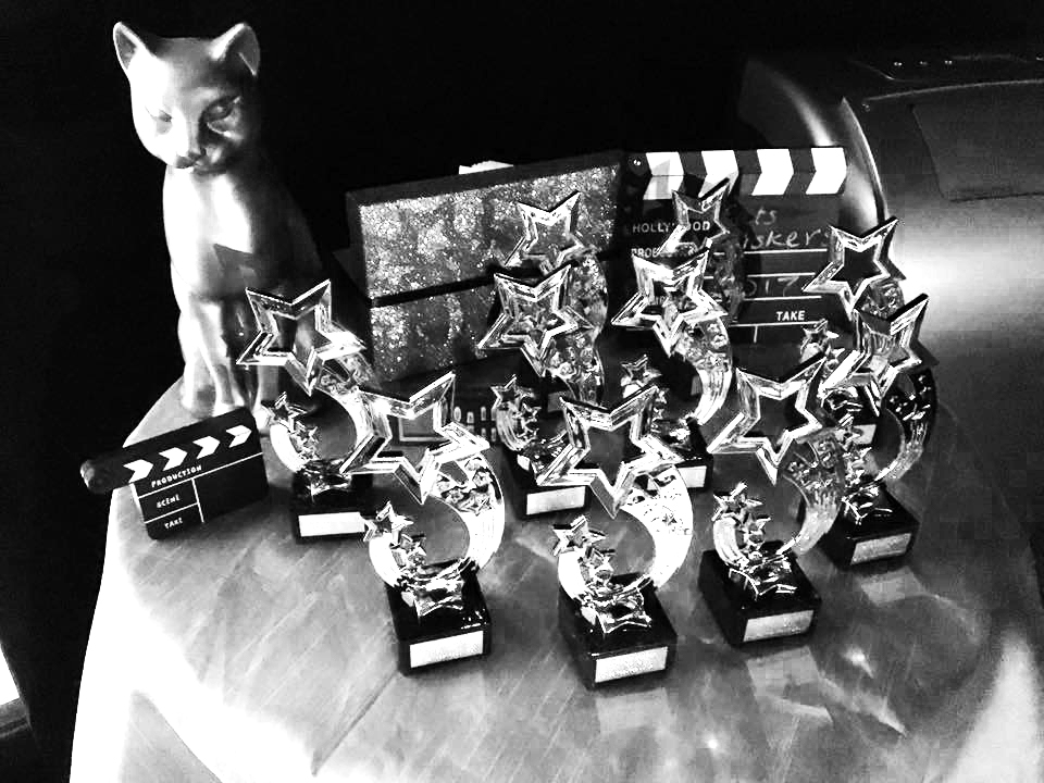 The Cat's Whiskers awards, lined up and ready to be delivered to a deserving company member.
