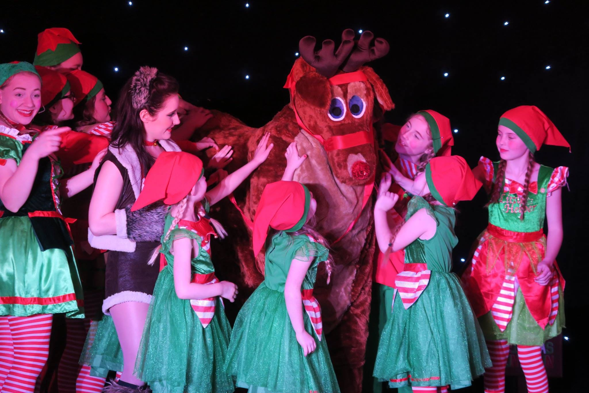 The elves gather round rudolph to say well done in the Nine Lives Christmas Show.
